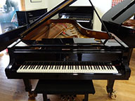 <span> 2 pianos grand queue de concert Steinway&Sons D274 Noir brillant </span>